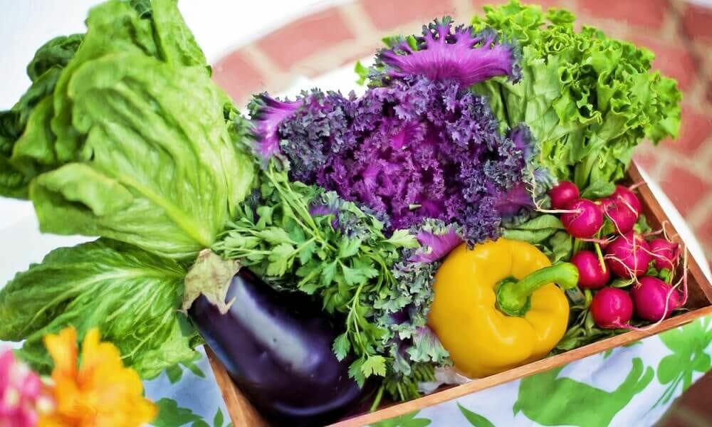 Krebszellen mögen kein Gemüse! Nahrungsmittel als Krebsprävention. I #125