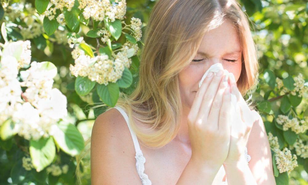 Allergien und Heuschnupfen ganzheitlich betrachtet | Was du selbst dagegen tun kannst | Teil 1 #228